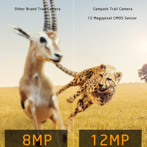 Фотоловушка Campark ночное видение 23м. 12MP IP56   HD 1080P