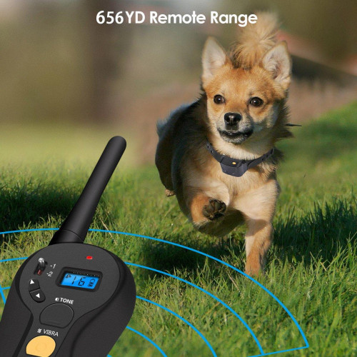 Ошейник для тренировки собаки FOCUSPET Водонепроницаемый IP67 Перезаряжаемый 650 м зарядка за 2 часа!