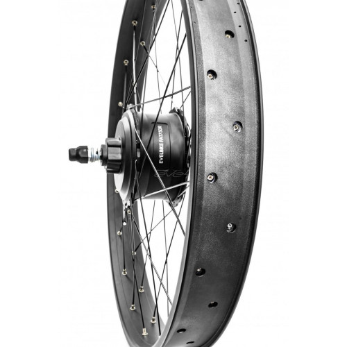 Электронабор Evel для велосипеда Фэтбайк 750Вт 48v Li-io заднее редукторное